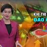 Khi thị trường chứng khoán đảo chiều: Tham lam hay sợ hãi?