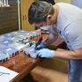 Đại sứ quán Nga ở Argentina giúp cảnh sát phá đường dây ma túy