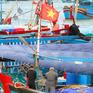 Phú Yên: Xuất hiện doi cát bồi, hơn 100 tàu câu cá ngừ mắc kẹt trong bờ