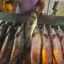 TP.HCM: Cá lóc đắt hàng ngày vía Thần tài