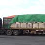 Bắt giữ 5 xe đầu kéo vận chuyển 500 tấn chất thải nguy hại