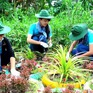 Biến bãi rác thành vườn hoa ở Đồng Tháp