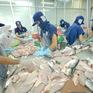 VASEP sẽ khởi kiện Mỹ về mức thuế cao kỷ lục với cá tra Việt Nam