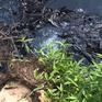 Bắt quả tang doanh nghiệp xả thải ra kênh thủy lợi Bắc Hưng Hải