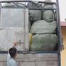Hải quan bắt giữ 6 xe tải chở hàng lậu