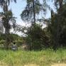 TP.HCM yêu cầu kiểm tra vụ bán rẻ hơn 30ha đất