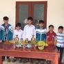 Ninh Bình: 6 thiếu niên trèo tường trộm các đồ vật bằng đồng