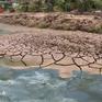 Bạc Liêu: Khẩn cấp bảo vệ môi trường nước phục vụ nuôi tôm