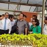 Lãnh đạo TP.HCM thăm công ty nông nghiệp Green 2000