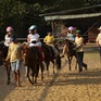 Cưỡi ngựa - Môn thể thao thú vị cho trẻ