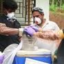 Virus Nipah lây lan nhanh ở Ấn Độ, ít nhất 10 người tử vong