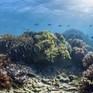 Dự án vẽ bản đồ thềm đại dương 2030