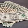 Peru thu giữ hàng triệu USD tiền giả