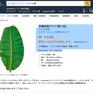 Lá chuối Việt được rao bán tại Nhật với giá 500.000 đồng