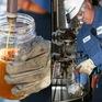 Italy: Biến dầu chiên trong bếp thành nhiên liệu tái tạo