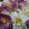Những sắc hoa mùa Hạ