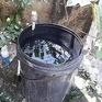 Đảo Cát Bà đứng trước nguy cơ thiếu nước ngọt