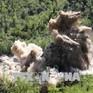 Mỹ khẳng định Triều Tiên bắt đầu phi hạt nhân hóa