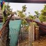 Lốc xoáy làm nhiều nhà dân, cơ quan ở Ba Tơ, Quảng Ngãi bị tốc mái