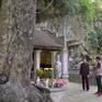Tìm về những câu chuyện linh thiêng ở Ninh Bình
