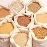 Việt Nam nhập khẩu thức ăn chăn nuôi lớn nhất từ Argentina