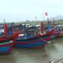 Thái Bình: Kêu gọi hơn 1.000 tàu thuyền vào nơi tránh trú bão