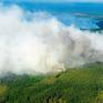 Cháy rừng lan rộng tại Thụy Điển do nắng nóng