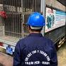 TP.HCM: Siết chặt tình trạng thả rông chó trên địa bàn quận 1