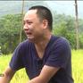 Bố ơi! Mình đi đâu thế?: Nguyễn Hải Phong hốt hoảng vì... mò phải ếch
