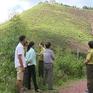 Khó chuyển từ rừng sản xuất sang rừng phòng hộ tại Quảng Ninh