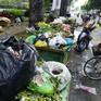 TP.HCM: Bãi tập kết rác gây ô nhiễm, mất an toàn giao thông