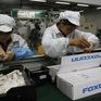 Foxconn công bố lợi nhuận giảm trước thời điểm iPhone sắp ra mắt