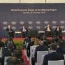 Việt Nam - Thành viên tích cực của Diễn đàn Kinh tế thế giới