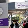 Trường Y New York, Mỹ cấp học bổng toàn phần cho sinh viên Y khoa