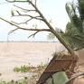 Gần 6.000 hộ dân sống trong vùng nguy cơ sạt lở