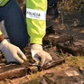 Phát hiện nửa tấn thuốc phiện trên chiếc xe bus gặp nạn ở Ecuador