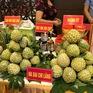 Hướng tới xuất khẩu na chính ngạch sang Trung Quốc