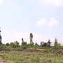 Hà Nội yêu cầu thu hồi 19 ha đất thuộc dự án chậm tiến độ