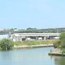 Hơn 800 cây cầu có nguy cơ sập ở Pháp