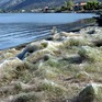 Kỳ lạ: Thị trấn ở Hy Lạp bị phủ kín bởi hàng nghìn lớp… mạng nhện