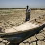Biến đổi khí hậu khiến 250.000 người chết mỗi năm do thiếu dinh dưỡng
