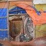 Phát hiện điểm khai thác vàng trái phép trong vườn ở Kon Tum