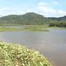Người dân Đồng Nai bức xúc vì hậu quả khai thác than bùn kéo dài