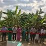 Trao tặng 3 cây cầu giao thông nông thôn tại Cà Mau