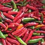 Ớt Việt được rao bán trên Amazon với giá 670.000 đồng/kg