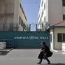 LHQ cảnh báo hậu quả từ việc Mỹ cắt ngân sách viện trợ cho Palestine