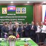 Hiệp hội Điều Việt Nam hỗ trợ Campuchia tăng sản lượng