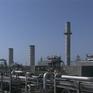 Sản lượng dầu OPEC sụt giảm trong tháng 12