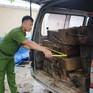 Quảng Nam: Bắt xe tải gắn biển số giả chở 10 phách gỗ lậu