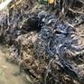 Chất Styren trong nước sông Đà cao gấp 3,65 lần quy chuẩn